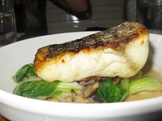 Louro - Striped Bass