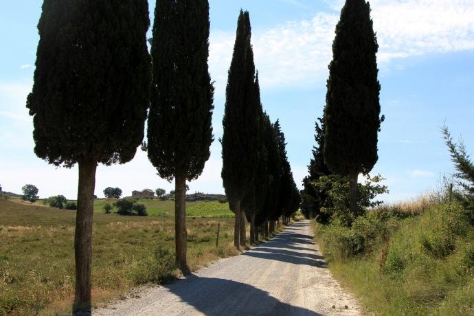 Italy - 2013 935