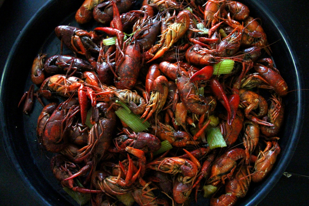 Image Gallery New Orleans Crawfish