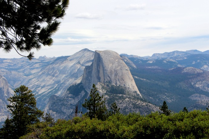 California-2015 924