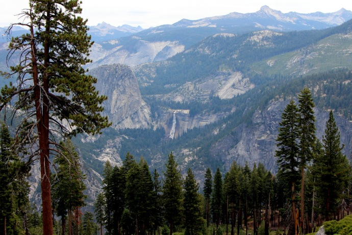 California-2015 939
