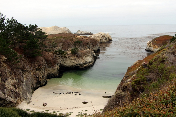 California-2015 1289