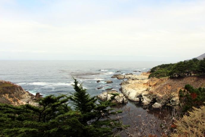 California-2015 1310